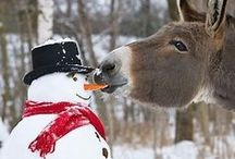 ~*~Snowman Love~*~ / by Connie Cochran
