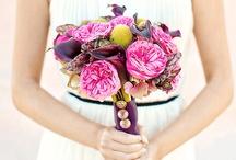 **Bouquet** / by Hisashi Hamada