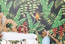 Heliconia 'Hawaii' Decorum Novelty