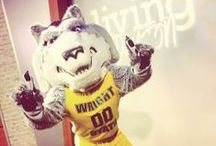 Rowdy! / by Wright State Raiders