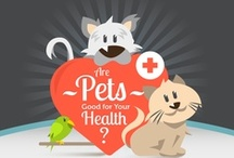 PetStep Tips for Healthy Pets / Tips, infographics and factoids to keep your furry loved ones healthy!