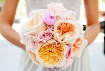 Bouquets / Awesome ideas for your bouquet
