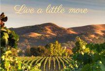 LVWC Map / Over 50 Award Winning Wineries