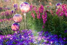 Super magical toadstool gardens