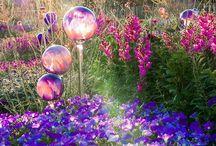 Super magical toadstool gardens