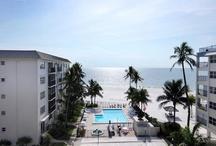 Waterfront Homes / Want more Waterfront Properties? Visit my website boardwalkfl.com!