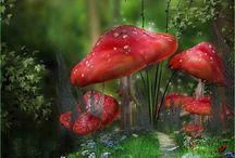 Elves, Fairies 'home