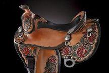 Equestrian - Chevalin