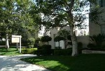 1436 20th St #8 / This #SantaMonica condo is close to the #expo and has room to grow.