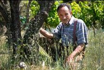 Rencontre avec Pierre RABHI et Maurice FREUND / Nous vous donnons l'occasion de voyager avec Pierre Rabhi et Maurice Freund au Maroc. Venez partager avec ces deux orateurs extraordinaires cette expérience unique !   http://www.point-voyages.com/fr/product/point-voyages-maroc-escapades-et-rencontres-agroecologiques-au-maroc-673.html
