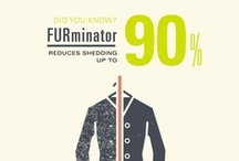 The 90%: Dog & Cat Hair Infographics / You ought to be able to hug your dog before you leave for work. You should not have to choose car upholstery based on how well it hides your pet's hair. You'll never be able to completely eliminate shedding, but you can reduce shedding up to 90% with FURminator. Need help imagining what 90% less hair looks like? Perhaps these will help.  / by FURminator®