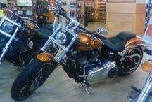 Wisconsin Harley Davidson Bikes / Check 'em out.
