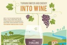 Wine Infographics / Le più belle infografiche sul vino