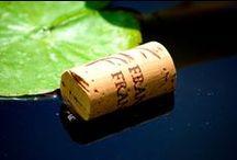 Franco Francesco / Sulle dolci colline di San Damiano d'Asti la Casa Vinicola Franco Francesco produce vini da tre generazioni sin dal lontano 1933