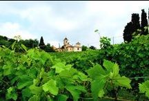 """Vicara / La tradizione del """"saper fare il vino"""" del Monferrato si incarna nell'idea intraprendente e innovativa di Diego Visconti, Carlo Cassinis e Domenico Ravizza che 22 anni fa hanno unito le proprie esperienze e le proprie aziende dando vita a Vicara."""