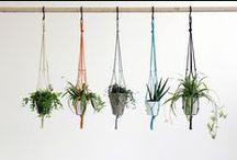 Rope Plant Pot Hangers