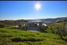 PS Winery / In una tipica casa mezzadrile marchigiana del '500, PS Winery ha scelto il biologico e una produzione limitata: perché crede nella sua terra, nel rispetto della natura e dell'uomo.