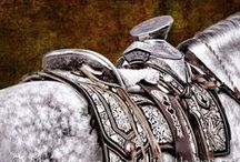 Tack / Bits and bridles and blankets and saddles