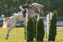 Hunter Jumpers / The sport - and art - of hunting and jumping