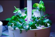 Plantui lab / Information about what Plantui is and how the Smart Garden works.