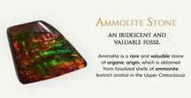 Ammolite Stone, an iridescent and vauable fossil / Ammolite Stone, Loose Stone, Information about Ammolite and more.