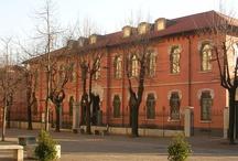 La biblioteca / by Biblioteca Comunale di Concorezzo