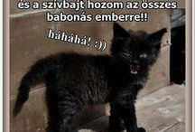 Babonaság-bolondság! / Babonák,hiedelmek..