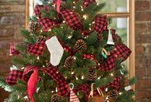 Christmas / Everything Minnesota Christmas- trees, decorating and more!