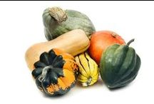 Winter Squash / Delicious and creative ways to use Minnesota grown winter squash.