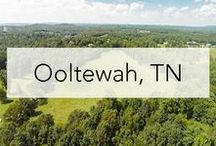 Ooltewah, Tennessee / Ooltewah