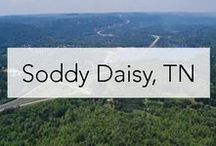 Soddy Daisy / Soddy Daisy