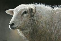 Ram/Schaap schilderijen / Ram/sheep paintings, The paintings displayed represent a selection of Klimas work.