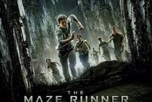 The Maze Runner / Please no spamming and only pin things related to the Maze Runner series :)    Feel free to comment if you want to be added. Good that?