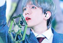 Baekhyun | 백현 / Stage Name: Baekhyun | 백현 Birth Name: Byun Baek Hyun | 변백현 Position: Main Vocalist Birthday: May 6, 1992 Zodiac sign: Taurus Nationality: Korean  Height: 174 cm (5'9″) Hometown: Bucheon, Gyeonggi Province, South Korea Subunit: EXO-K, EXO-CBX  ©Kprofiles.com