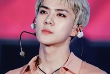 Sehun | 세훈 / Stage Name: Sehun | 세훈 Birth Name: Oh Se Hun | 오세훈 Position: Lead Dancer, Lead Rapper, Vocalist, Visual, Maknae Birthday: April 12, 1994 Zodiac sign: Aries Nationality: Korean Height: 183 cm (6'0″) Hometown: Seoul, South Korea Subunit: EXO-K   ©Kprofiles.com