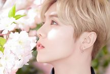 "Luhan | 루한 / Stage Name: Luhan (루한) Birth Name: Lu Han (鹿晗) Position: Lead Vocalist, Lead Dancer, Face of The Group Birthday: April 20, 1990 Zodiac sign: Aries Height: 178 cm (5'10"") Nationality: Chinese Hometown: Beijing Haidian, China Subunit: EXO-M - On October 10, 2014, Lu Han filed a lawsuit against SM Entertainment asking for the termination of his contract, and left EXO.   ©Kprofiles.com"