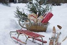Christmas / All around the best time of the year! visit us also on: www.facebook.com/DerGruneDaumenTheGreenThumb / by Heidi Woitischek