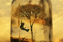 ART - (in  a) GLASS / by Sharon