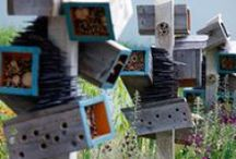 Insect hotels / by Kelly Brenner