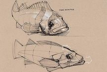 Illustrations | Animals / Miscellaneous preparations, sketches, drawings and ideas for illustrations...
