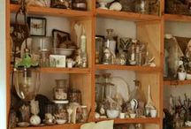 Cabinet of Curiosities / by Kelly Brenner