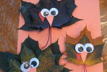 Thanksgiving / Halloween / by Heather Carroll