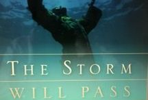THE STORM WILL PASS, DON'T JUMP SHIP / THE STORM WILL PASS, DONT' JUMP SHIP, is an inspirational book filled with stories of encouragement to inspire you to hold on while going through the storms of life.  To hold on during times when you feel all hope is gone, when it seems God is silent, when your vision is delayed, when family and friends have turned away, but most of all to remind you God cares and has not forgotten about you.