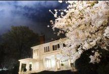 Marietta, GA / Landmarks, places to visit, and well-kept secrets in beautiful Marietta, GA