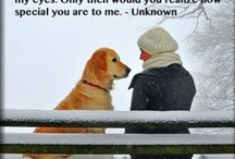 Dogs; they hold a special place in my heart