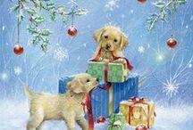 Navidad & Paz