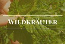 Wildkräuter / Die Vielfalt der Natur ist grenzenlos. Ohne Wildkräuter möchte ich nicht auskommen müssen. www.biotopicafarm.de