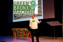 "Stephen Ritz Changing the Game / Meet the extraordinary man of passion, Stephen Ritz. He is passionate about inciting passion among his students. He is a teacher and calls himself the oldest sixth grader. He founded the Green Bronx Machine, a non-profit organization that had its humble beginnings at Discovery School in The Bronx. Stephen transformed his once violent students to responsible kids. ""Kids need role models, so always be mindful of how you conduct yourself."" Stephen Ritz http://www.thextraordinary.org/stephen-ritz"