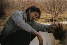 köpekliler / by Dilek Cansel