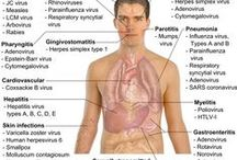 Medical pins / Follow us on: http://medicforyou.blogspot.com Medical topics for undergraduates and graduates, this board is all about interesting medical stuff around world. Clinical guidelines, practical skills, dealing with patient, theory of mbbs, almost everything for a medical mbbs student or a doctor. #Medical #MBBS